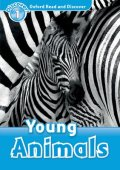 Read and Discover Level 1 Young Animals CD Pack
