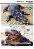 Intro A1 Level :Crocs and Gators (Cambridge Discovery Interactive Readers)