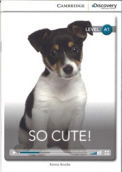 画像1: 【Cambridge Discovery Interactive Readers】Intro A1 Level : So Cute