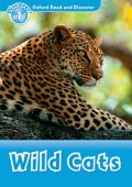Read and Discover Level 1 Wild Cats CD Pack