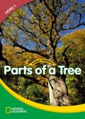 WW Level 1-Science: Parts of a Tree