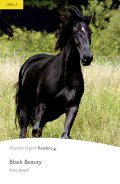 Level 2: Black Beauty Book